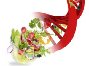 DNA-Ernährung Genetische Variationen beeinflussen, wie Ihr Körper auf bestimmte Nährstoffe und Nahrungsmittelinhaltsstoffe reagiert und welche Stoffe er richtig umwandeln und verwerten kann.